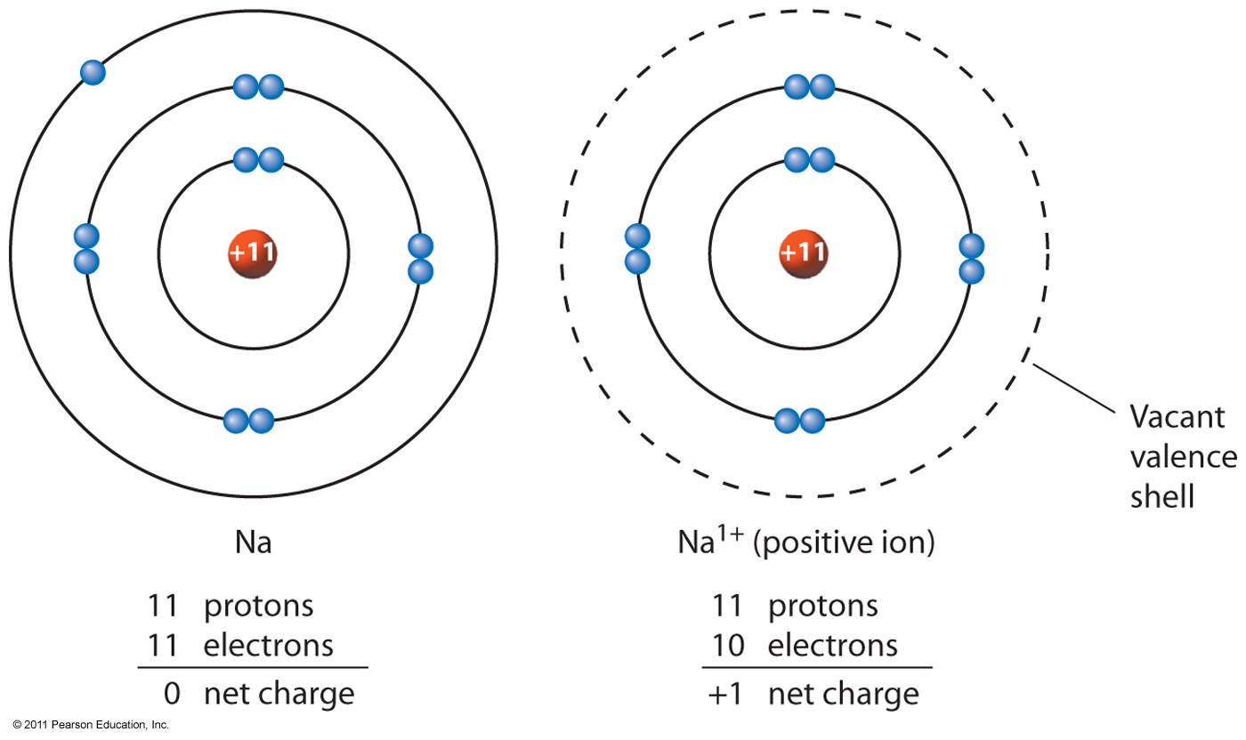 Electron configuration of sodium metal and sodium cation